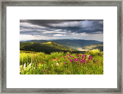 Springtime Mountain Framed Print by Evgeni Dinev