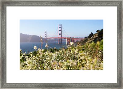 Framed Print featuring the photograph Springtime On The Bay by Everet Regal