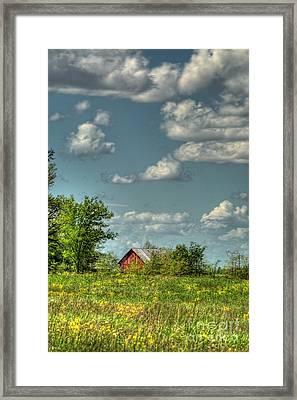 Springtime  Framed Print by Pamela Baker
