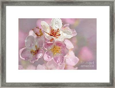 Springtime Pink By Kaye Menner Framed Print by Kaye Menner