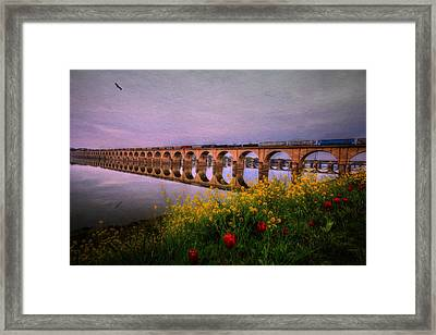 Springtime Reflections From Shipoke Framed Print