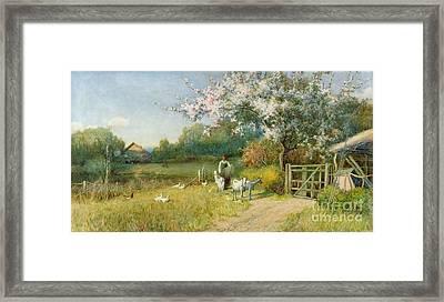 Springtime Framed Print by Sir Alfred East