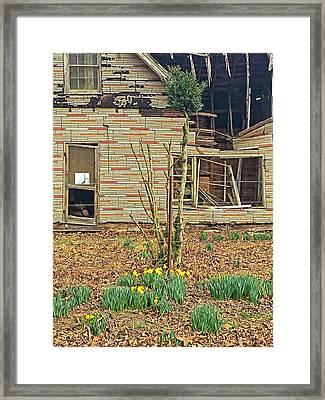 Springtime Framed Print by Susan Leggett