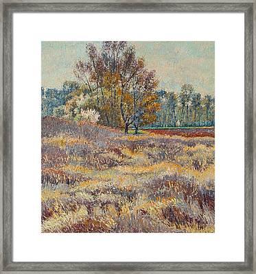 Springtime Framed Print by Vitali Komarov