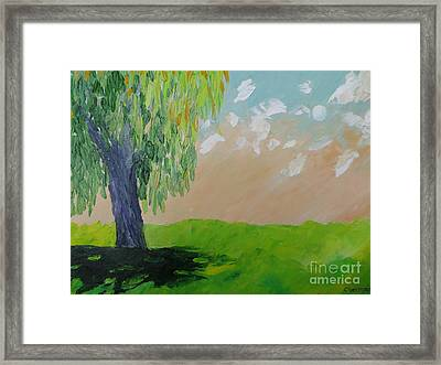 Springtime Willow Framed Print by Stella Sherman