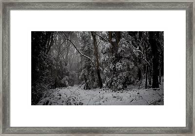 Sprinkled White Framed Print by Michael James