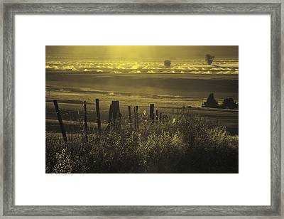 Sprinklers At Sunrise In The Wallowa Valley Framed Print