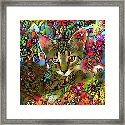 Sprocket The Tabby Kitten Framed Print