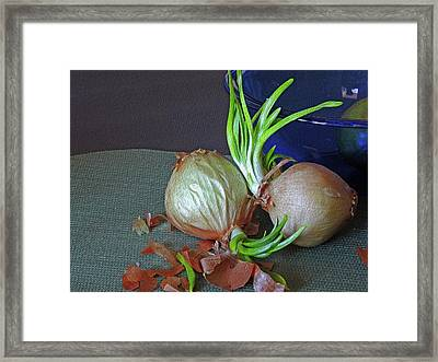 Sprouted Duo Framed Print