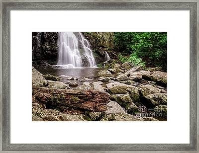 Spruce Falls Framed Print by Todd Bielby