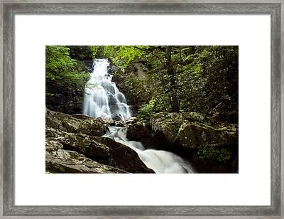 Spruce Flat Falls Framed Print by Amanda Kiplinger