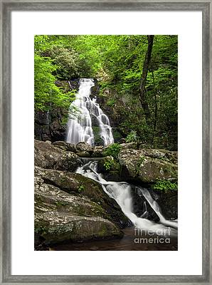 Framed Print featuring the photograph Spruce Flats Falls - D009919 by Daniel Dempster