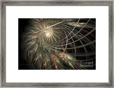 Spun Feathers Framed Print