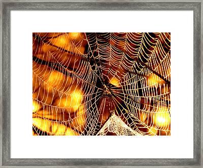 Spun Gold Framed Print by Dianne Cowen