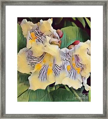 Spun Gold Framed Print by Kathie Chicoine