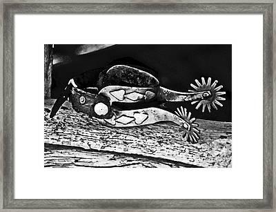 Spurs  Framed Print by Juls Adams