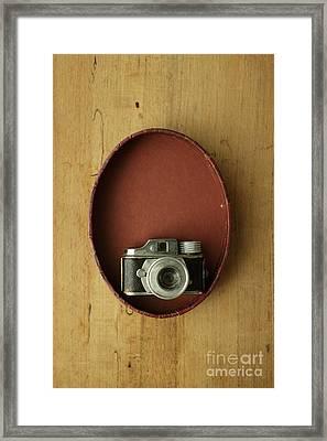 Spy Camera Framed Print by Edward Fielding