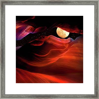 Mn0643 Framed Print by Mikes Nature