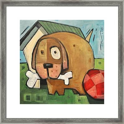 Square Dog Framed Print