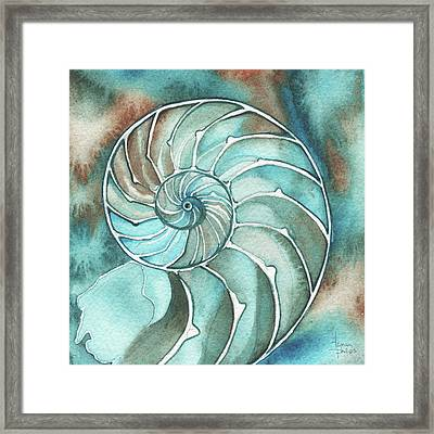 Square Nautilus Framed Print by Tamara Phillips