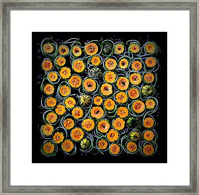 Squash And Zucchini Patters Framed Print