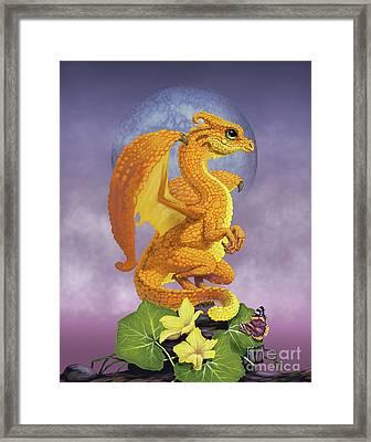 Squash Dragon Framed Print by Stanley Morrison