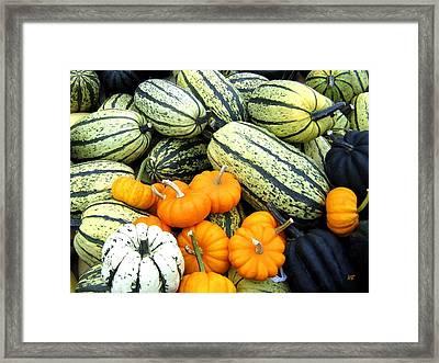 Squash Harvest Framed Print by Will Borden
