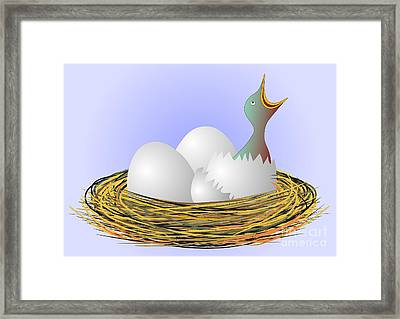 Squeaker Hatching From Eggs Framed Print by Michal Boubin