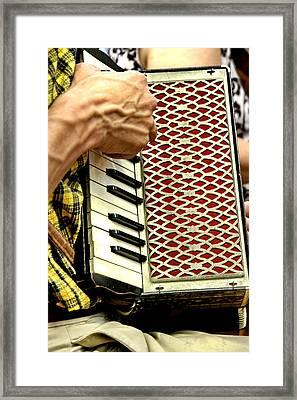 Squeeze Box Framed Print by Alan Skonieczny