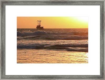 Squid Boat Golden Sunset Framed Print