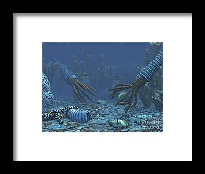 Paleozoology Framed Prints