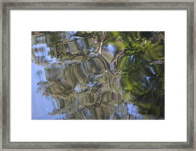Squiggles Framed Print by Mona McClave Dunson