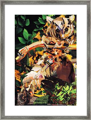 Squirrel Glider Collage Framed Print