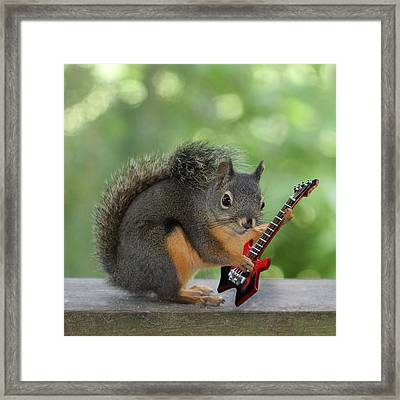 Squirrel Playing Electric Guitar Framed Print