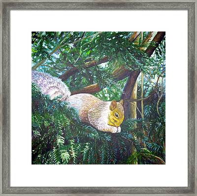 Squirrel Snacking Framed Print