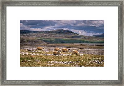 Sringtim On Pen Y Ghent Framed Print by Peter Stuart