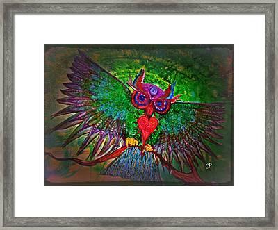Ss Owl Framed Print