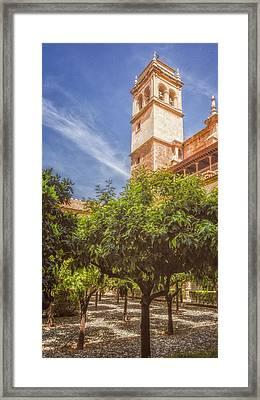 St Jerome Cloister Granada Framed Print by Joan Carroll