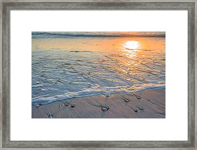 St Joe State Park Framed Print by JC Findley