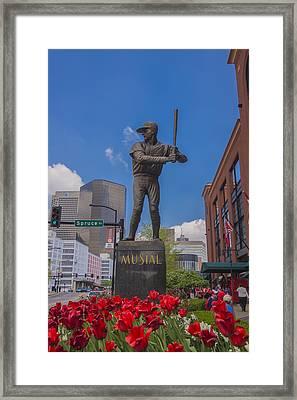 St. Louis Cardinals Busch Stadium Stan Musial Roses Framed Print by David Haskett