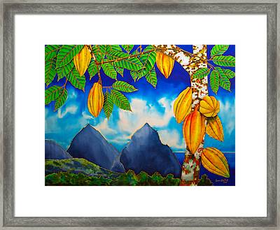 St. Lucia Cocoa Framed Print