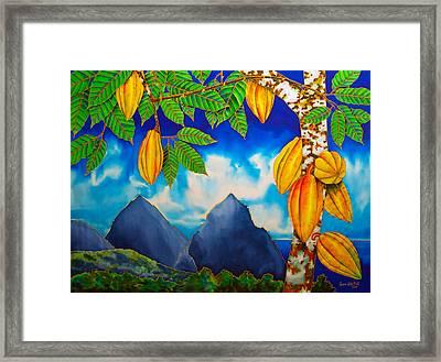 St. Lucia Cocoa Framed Print by Daniel Jean-Baptiste