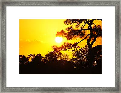St. Lucie West Sunset Framed Print by Lynda Dawson-Youngclaus
