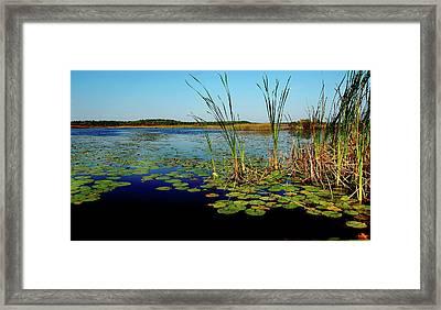 St. Mark's Lake Framed Print