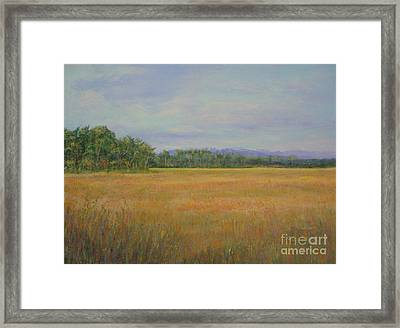 St. Marks Refuge I - Autumn Framed Print by Gail Kent
