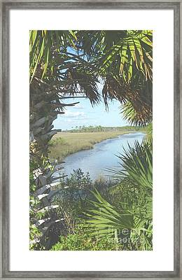 St. Mark's Marshes Framed Print by Audrey Peaty