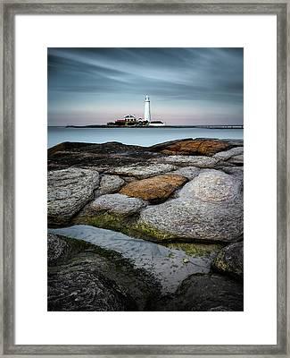 St Mary's Lighthouse Framed Print by Dave Bowman