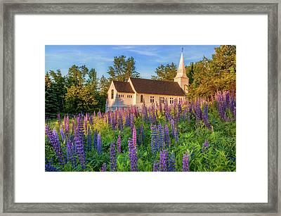 St Matthews Church - Sugar Hill New Hampshire  Framed Print by Thomas Schoeller