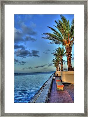St. Petersburg Pier Tampa Bay Framed Print