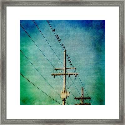 Birds On A Line Framed Print